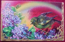 Cpa Gaufrée OISEAU, MOINEAU Sur LILAS ,dorures , BIRD SPARROW On  LILAC Flowers, Embossed  BIRTHDAY - Anniversaire