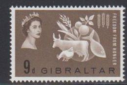 Gibraltar 1963 Freedom From Hunger 1v ** Mnh (41487N) - Gibraltar