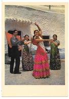 CUEVA DE LOS AMAYA EN EL SACROMONTE - Granada - N° 3 - Danse Flamenco - Granada