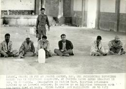 ( EGYPTE )  (ISRAEL  )( MILITAIRES )( PRISONNIERS EGYPTIENS ) ( EVENEMENTS ) 1973  17.5 X 12.5 - Luoghi