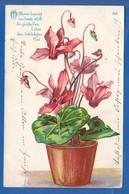 Blumen; Fleurs; 1908 - Blumen