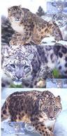 2014. Kyrgyzstan, Fauna, Snou Leopard, 3 Maxicards, Mint/** - Kirgisistan