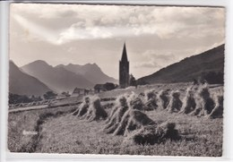 05 SAINT CHAFFREY Moisson , Gerbe De Grains - France