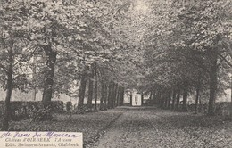 Chateau D'Oirbeek Par Tirlemont , L'Avenue , ( Edit : Swinnen - Arnauts , Glabbeek ) - Tienen