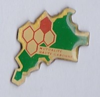 PIN S ASSURANCE MUTUALITE HAUTE GARONNE - Badges