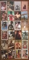 Lot De 24 Cartes Postales / Personnages D' AFRIQUE /b - Postcards