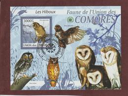 COMORES - Bloc Feuillet N° 200 De 2009 - Oblitéré - LES HIBOUX - Faune De L'UNION DES COMORES - Comores (1975-...)
