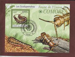 COMORES - Bloc Feuillet N° 216 De 2009 - Oblitéré - LES SCOLOPENDRAS - Faune De L'UNION DES COMORES - Comores (1975-...)