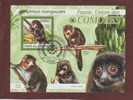 COMORES - Bloc Feuillet N° 194 De 2009 - Oblitéré - LES LEMURS MANGOUSTES - Faune De L'UNION DES COMORES - Comores (1975-...)