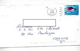 Lettre Flamme Muette Casablanca Sur Poisson - Morocco (1956-...)