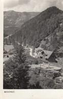 Postcard ROGOVILEC Slovenia Slovenija Yugoslavia 1966 - Slovénie