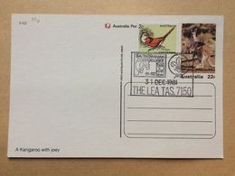 AUSTRALIA 1981 Scout Postcard - 5th Tasmanian Corroboree - The Lea - 1980-89 Elizabeth II