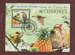 COMORES - Bloc Feuillet N° 214 De 2009 - Oblitéré - LES LORIOTS D'EUROPE - Faune De L'UNION DES COMORES - Comores (1975-...)