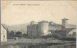 Puy De Dome : Issoire, Environs, Chateau De Péchot - Issoire
