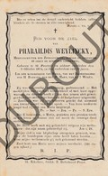 Doodsprentje Pharaildis Weylinckx °1805 St. Pauwels †1874 Medestichtster Der Zondagschool  (F254) - Décès
