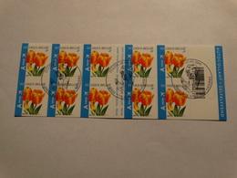 Belgié 2005-Tulipe -obl Premier Jour. - Carnets 1953-....