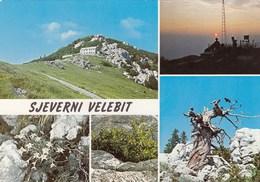 Postcard Sjeverni Velebit Mountain Croatia Yugoslavia 1978 - Croatia