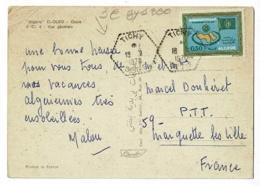 """Cachet Hexagonal Pointillé """" Tichy, Sétif"""" Circulé 1970, Sur CP El Oued - Oasis, Vue Générale - Algérie - Algérie (1962-...)"""