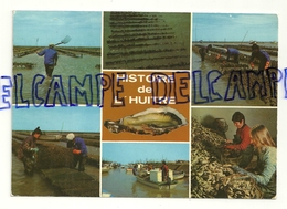 Histoire De L'huître. La Vendée Touristique. Edition Du Vieux-Chouan. Cliché Ektachrome. 1987 - Elevage