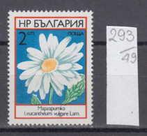 49K293 / 2304  Bulgaria 1973 Michel Nr. 2235 - Margerite (Leucanthemium Vulgare) - Wild Flowers Fleurs Blumen - Plants