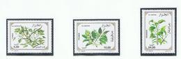 Algerië 1999    Xxx 6 Bloem Fleur Flower - Pflanzen Und Botanik