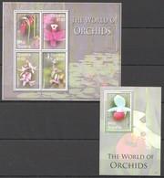 X532 2006 GUYANA FLORA NATURE FLOWERS THE WORLD OF ORCHIDS 1KB+1BL MNH - Orchideen