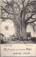 """Congo Belge Pub Cigares """"cachets Bleus"""" Baobab A Boma Nels Serie 14 No 33 - Belgisch-Congo - Varia"""