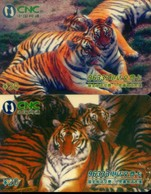 China Netcom Prepaid Cards, Heilongjiang Province, Tiger (2pcs) - Jungle