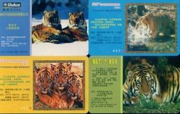 China Telecom Prepaid Cards, Guangxi Province, Guilin City , Tiger (4pcs) - Jungle