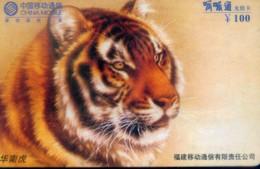 China Mobile Prepaid Cards, Fujian Province, Tiger (1pcs) - Jungle
