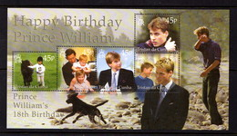 TRISTAN  DA  CUNHA    2000    18th  Birthday  Of  Prince  William   Sheetlet    MNH - Tristan Da Cunha