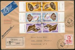 MAROKKO, Royaume Du Maroc, Muscheln 1965 Auf R-Brief Von CASABLANCA Nach GREVEN - Morocco (1956-...)