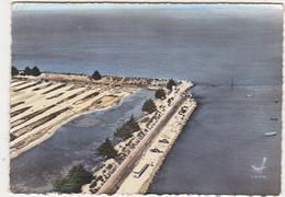 85 - EN AVION AU-DESSUS DE... PASSAGE DU GOIS (Vendée) - Ile De Noirmoutier