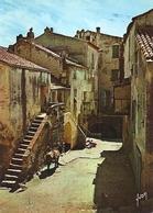 20. (2B). CPM. Haute Corse. Calvi. Vieilles Maisons Dans La Basse Ville (animée, Enfants, Mulet) - Ajaccio