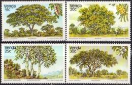 VENDA - Arbres 1984 - Venda