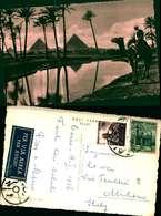 10599a) Cartolina    The Piramids Of Giza - Pyramids