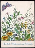 C0466 - Glückwunschkarte Geburtstag DDR - VEB Postkartenverlag Berlin - Blumen Schmetterling - Geburtstag