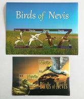 Nevis 2010** Mi.klb.2429-32 + Bl.286. ( Birds) [16;128] - Vögel