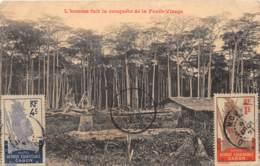 Gabon / Topo - Belle Oblitération - 48 - L'homme Fait La Conquête De La Forêt Vierge - Gabon