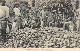 Guinée Espagnole / 03 - Fernando Po - Pinas De Cacao - Guinea