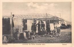 Guinée  Portuguaise / 17 - Bissau - Antonio Da Silva Gouvea - Guinea-Bissau