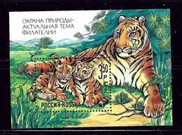 Russia B185 MNH 1992 Tiger S/S - Russia & USSR