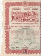 "Action 1909 / ""La Preciosa"" / Minas De Oroy Plata / Capital 1 Million Pesos Oro / Mexique - Shareholdings"