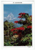 032081 # Nepal - Népal