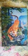 Old NORTH KOREA  Postcard -  Tiger  - STEREO 3D PC - - Rare!!! - Korea, North