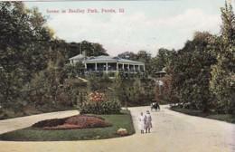 Illinois Peoria Scene In Bradley Park 1908 - Peoria