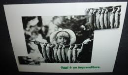 Carte Postale - Oggi è Un Imprenditore (enfant Avec Des Poissons) Omnitel - Publicité