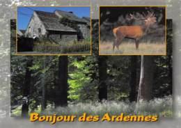 CPM - Bonjour Des Ardennes - Belgique