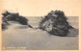 ST-IDESBALD A/Zee - Als Een Schildwacht Aan De Zee - Koksijde