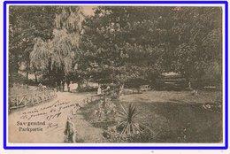 21487  Cpa   SAARGEMÜND / Sarreguemines :  Parkpartie  ! 1919 !! - Sarreguemines